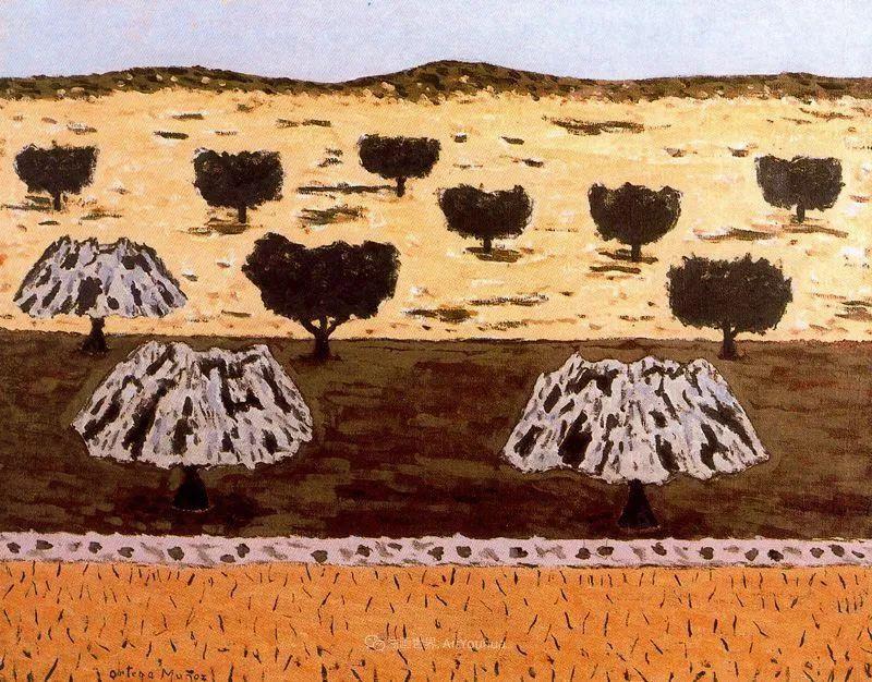 质朴的风景,干燥土地上重复着的孤木!插图77