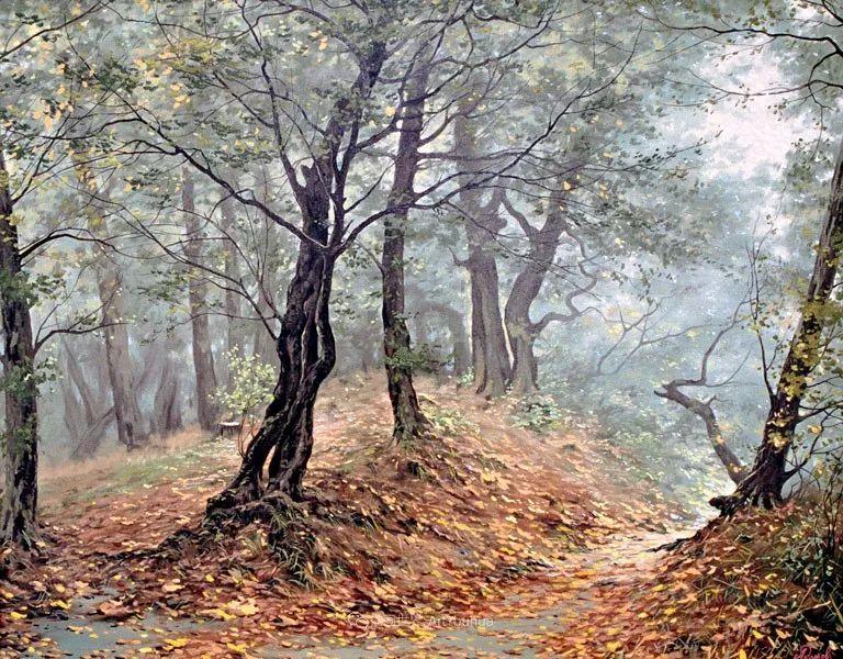 安静的风景,唤醒了人们美好的感觉和回忆!插图8
