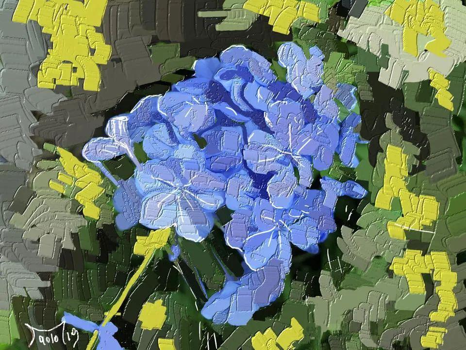 独特的笔触,别样的花卉,美!插图5