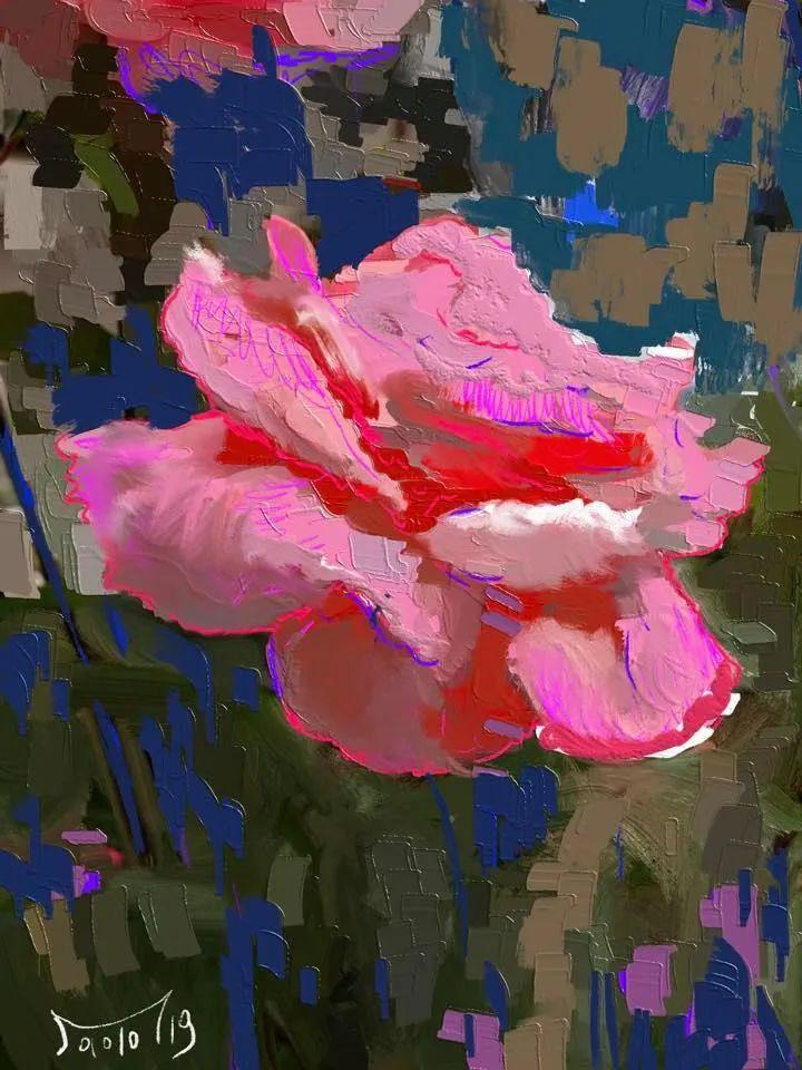 独特的笔触,别样的花卉,美!插图18