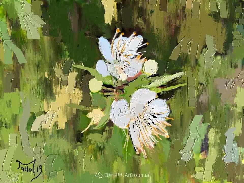 独特的笔触,别样的花卉,美!插图26