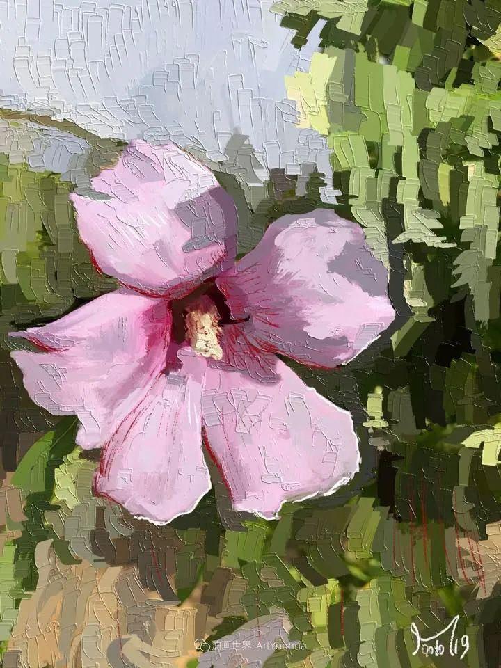 独特的笔触,别样的花卉,美!插图29
