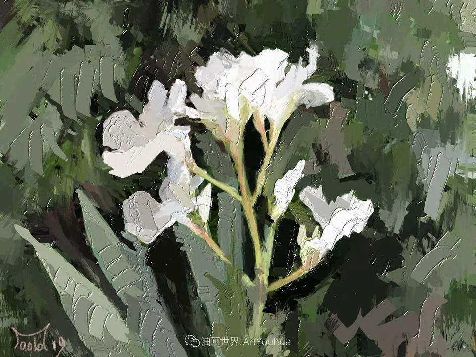 独特的笔触,别样的花卉,美!插图34