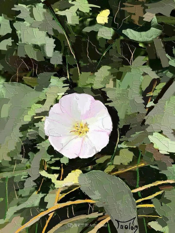 独特的笔触,别样的花卉,美!插图38