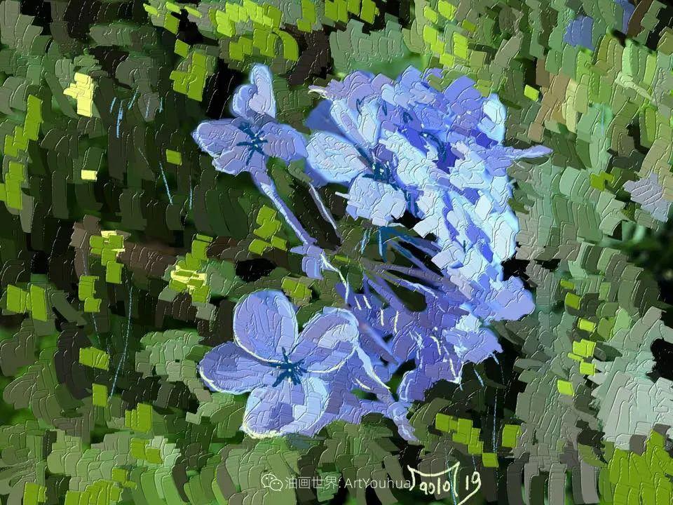 独特的笔触,别样的花卉,美!插图41