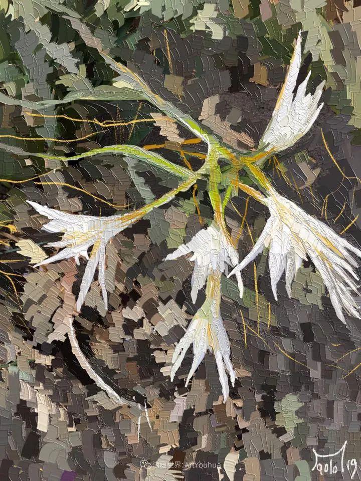 独特的笔触,别样的花卉,美!插图44