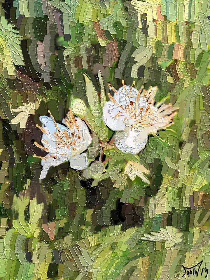 独特的笔触,别样的花卉,美!插图47