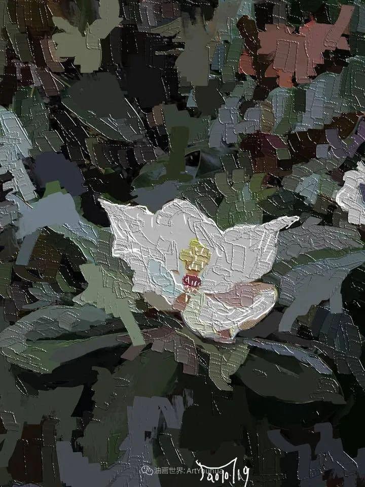 独特的笔触,别样的花卉,美!插图57