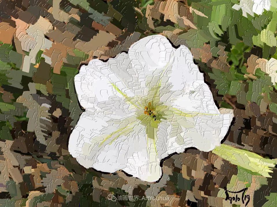 独特的笔触,别样的花卉,美!插图58