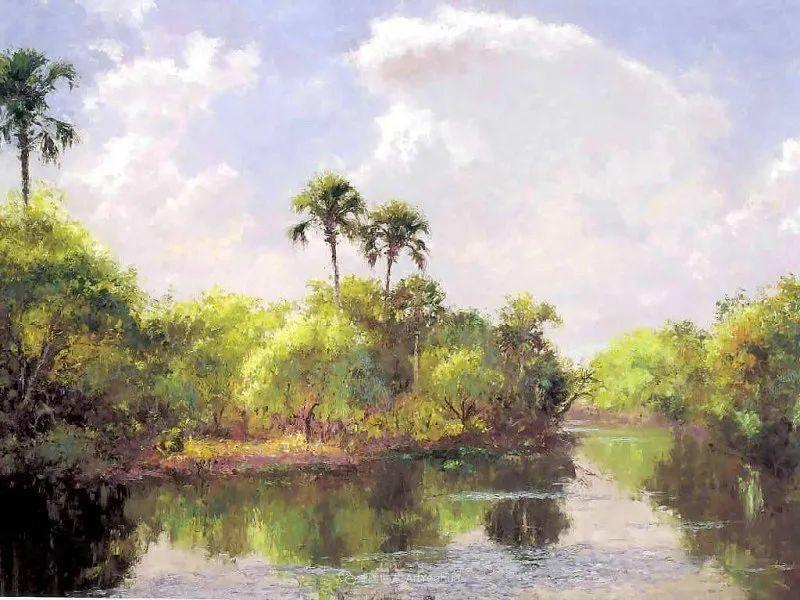 他自学成才,被称为是佛罗里达州画家的院长插图71