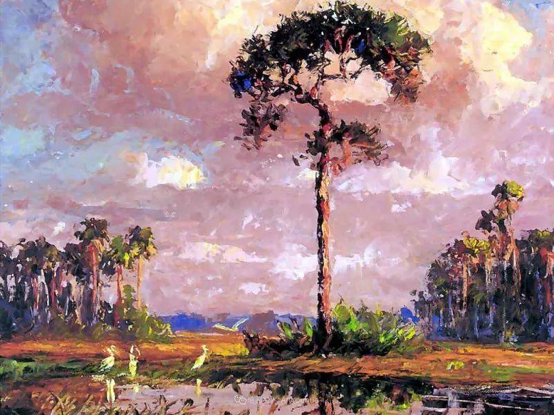 他自学成才,被称为是佛罗里达州画家的院长插图107