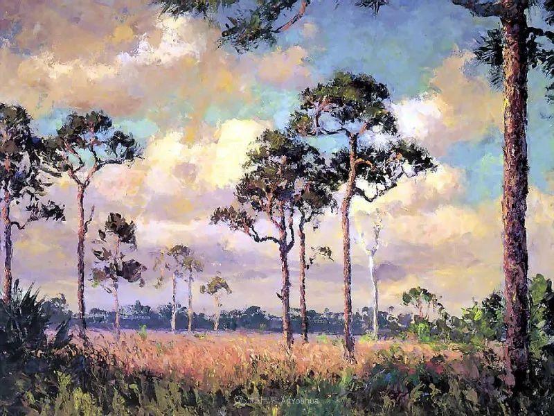 他自学成才,被称为是佛罗里达州画家的院长插图111