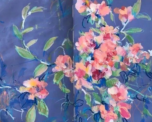 藏在画本里精美的花儿们,好美!插图17