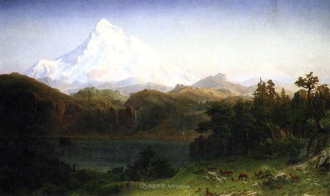 雄奇壮丽的山脉插图15