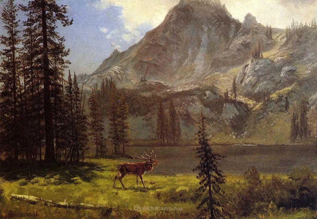 雄奇壮丽的山脉插图26