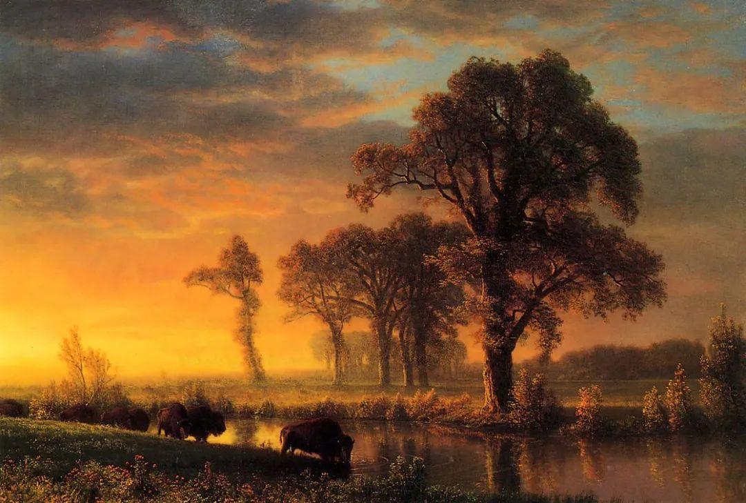 浪漫的光色,迷人的自然风光,强大视觉冲击力插图3