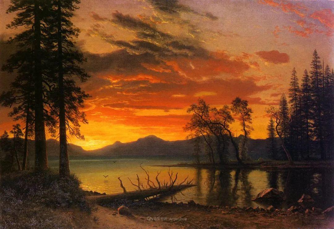 浪漫的光色,迷人的自然风光,强大视觉冲击力插图19