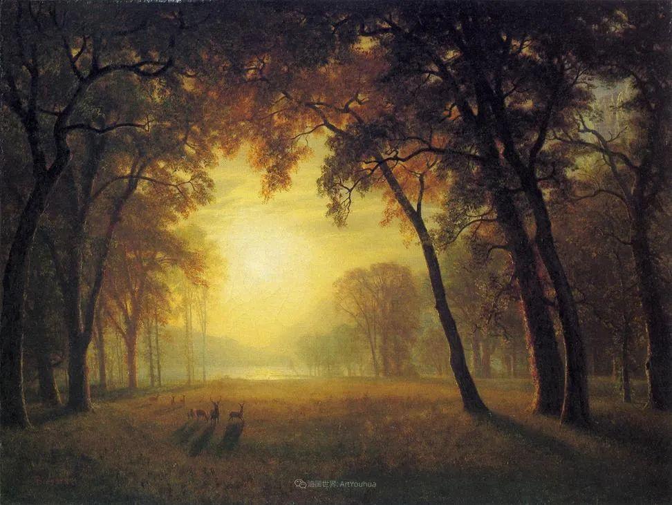 浪漫的光色,迷人的自然风光,强大视觉冲击力插图39