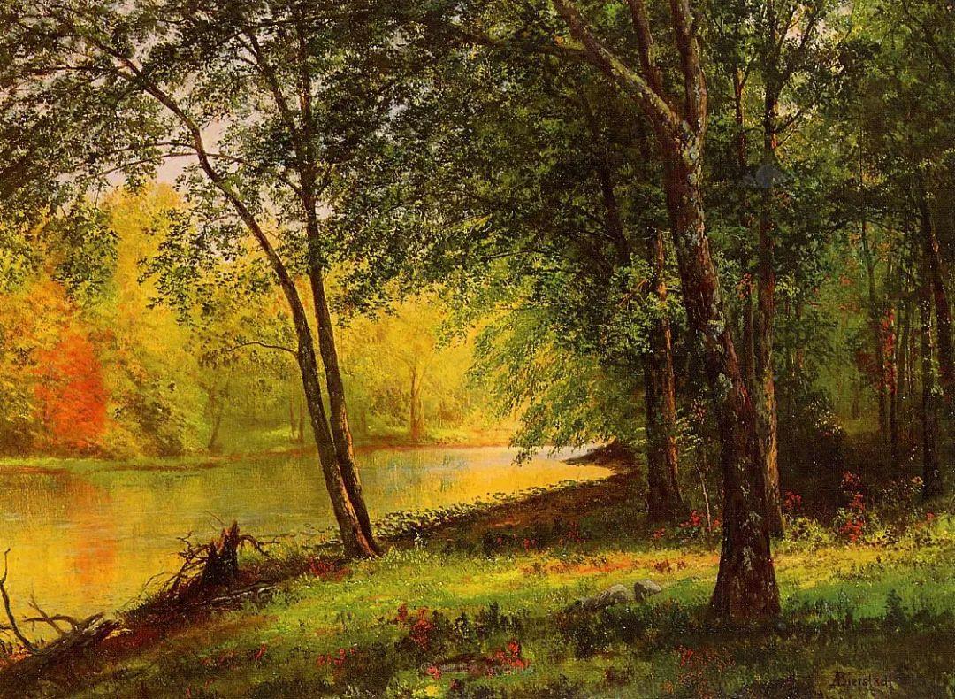 浪漫的光色,迷人的自然风光,强大视觉冲击力插图43