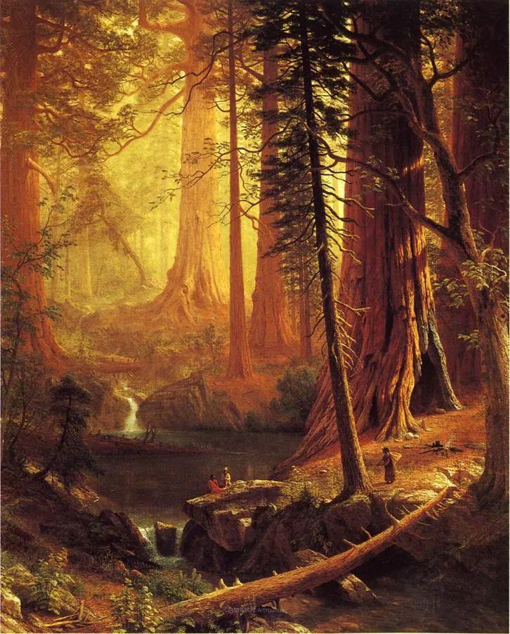 浪漫的光色,迷人的自然风光,强大视觉冲击力插图79