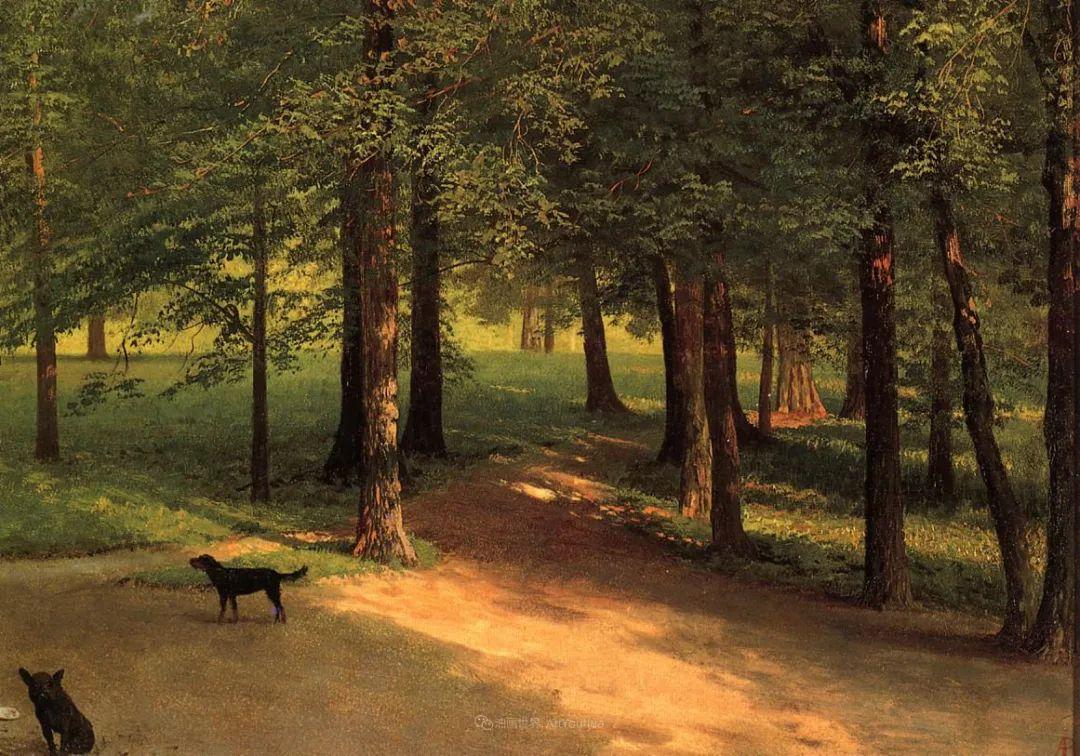 浪漫的光色,迷人的自然风光,强大视觉冲击力插图91