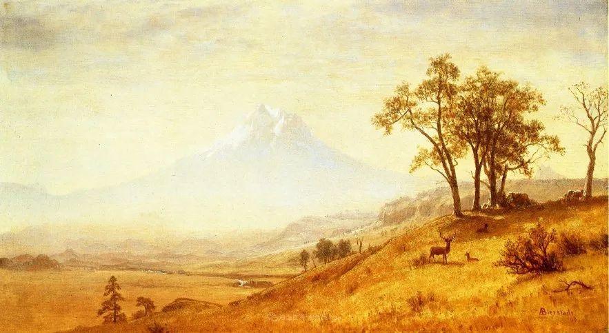 浪漫的光色,迷人的自然风光,强大视觉冲击力插图95