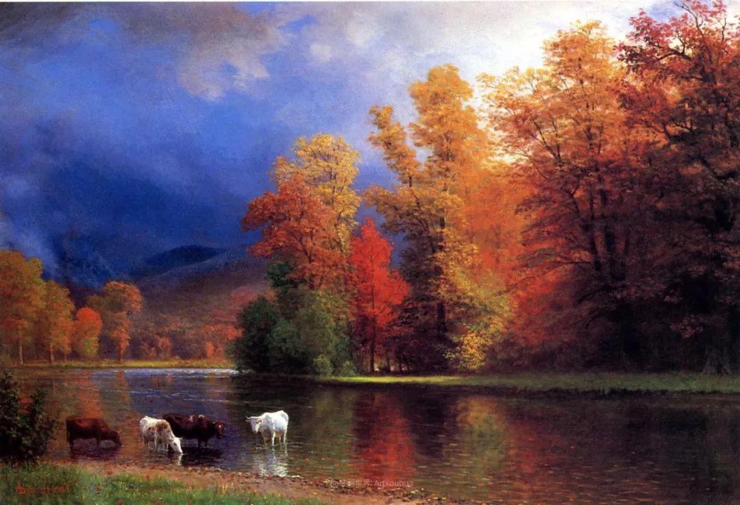 浪漫的光色,迷人的自然风光,强大视觉冲击力插图105