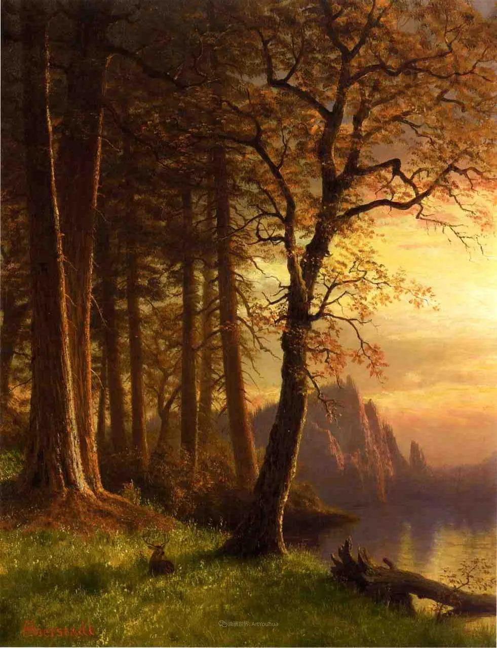 浪漫的光色,迷人的自然风光,强大视觉冲击力插图107
