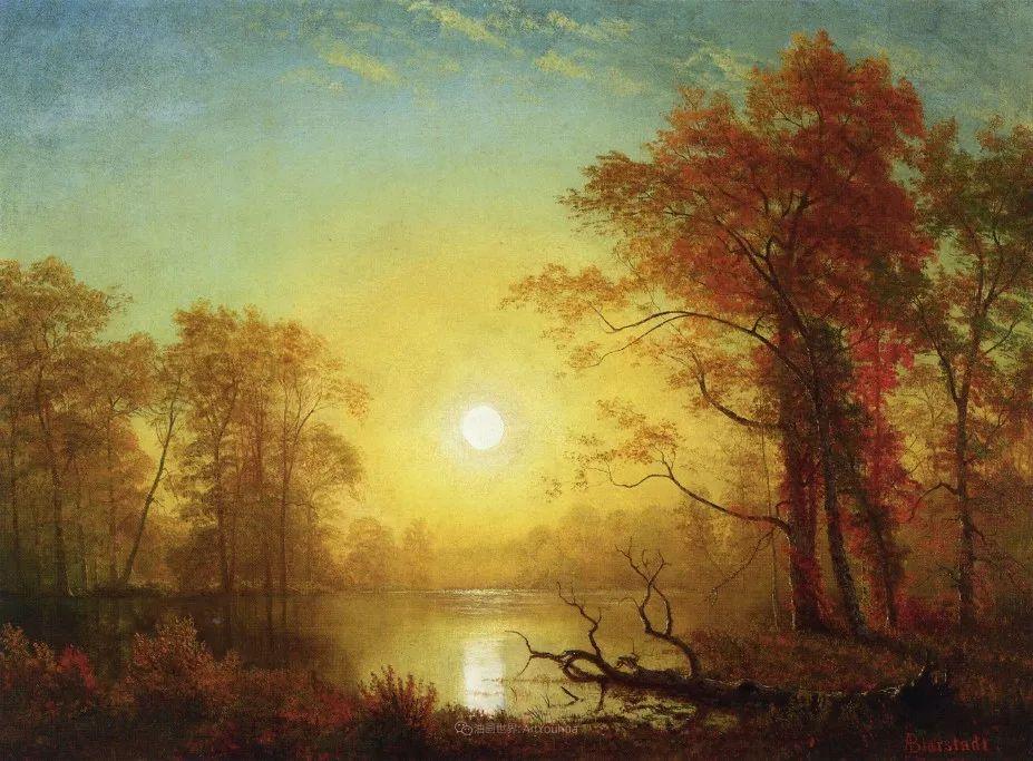 浪漫的光色,迷人的自然风光,强大视觉冲击力插图113