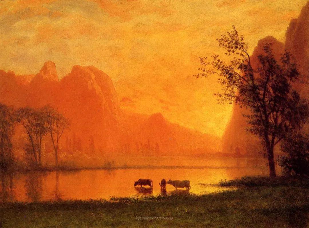 浪漫的光色,迷人的自然风光,强大视觉冲击力插图117