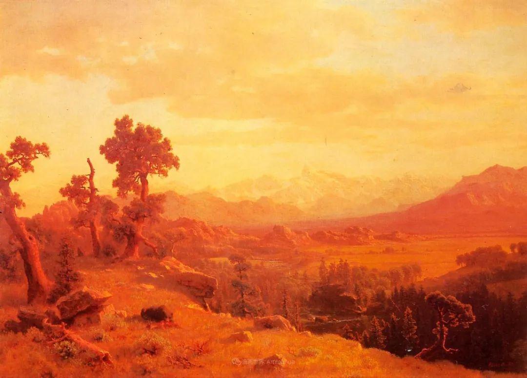 浪漫的光色,迷人的自然风光,强大视觉冲击力插图133