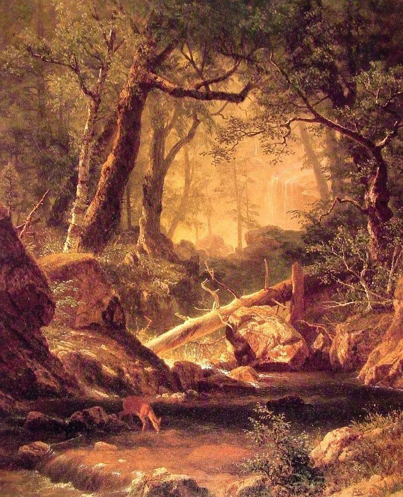 浪漫的光色,迷人的自然风光,强大视觉冲击力插图139