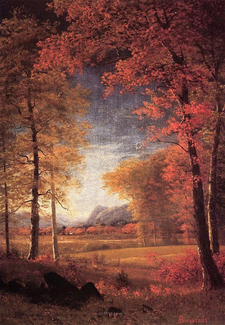 浪漫的光色,迷人的自然风光,强大视觉冲击力插图151