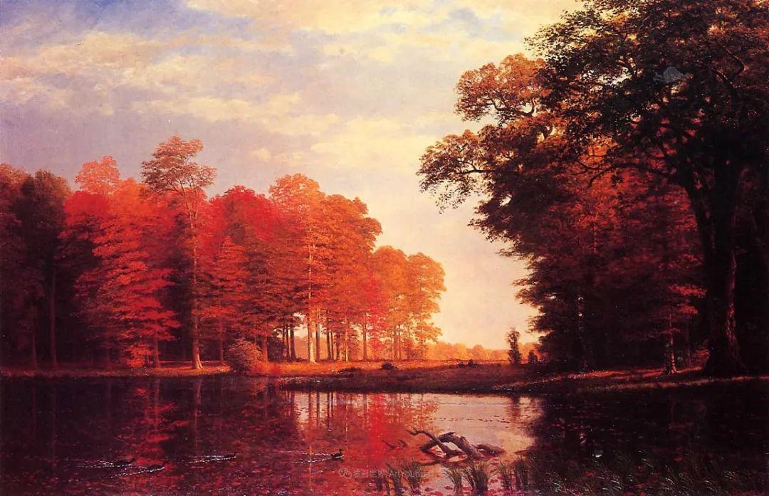 浪漫的光色,迷人的自然风光,强大视觉冲击力插图153