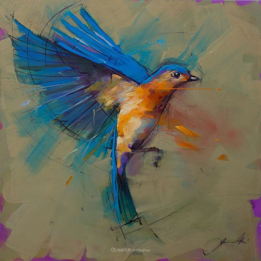 飞行中的鸟儿之美,活力飞扬,太赞了!插图3