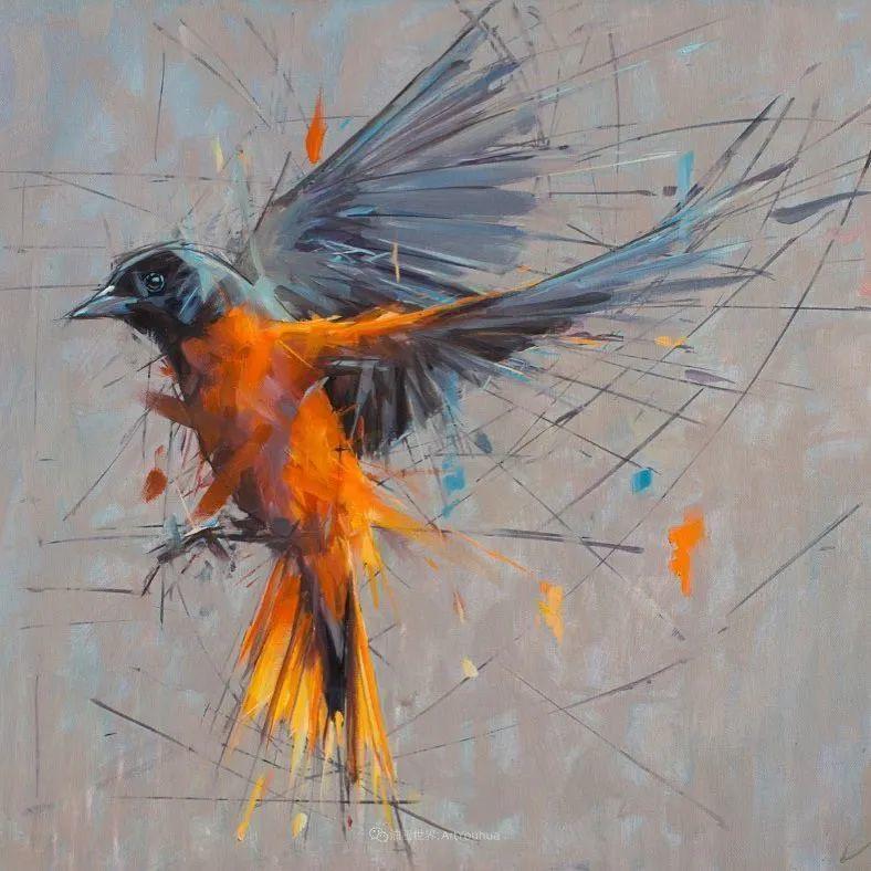 飞行中的鸟儿之美,活力飞扬,太赞了!插图11