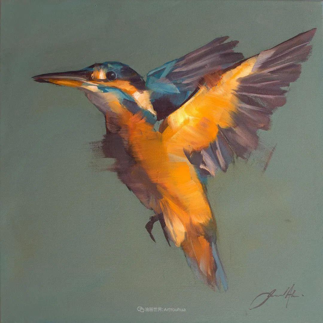 飞行中的鸟儿之美,活力飞扬,太赞了!插图15