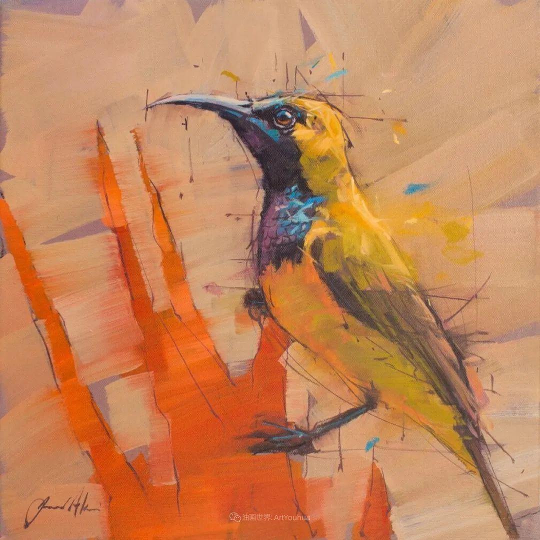 飞行中的鸟儿之美,活力飞扬,太赞了!插图46