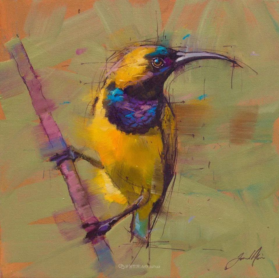 飞行中的鸟儿之美,活力飞扬,太赞了!插图53