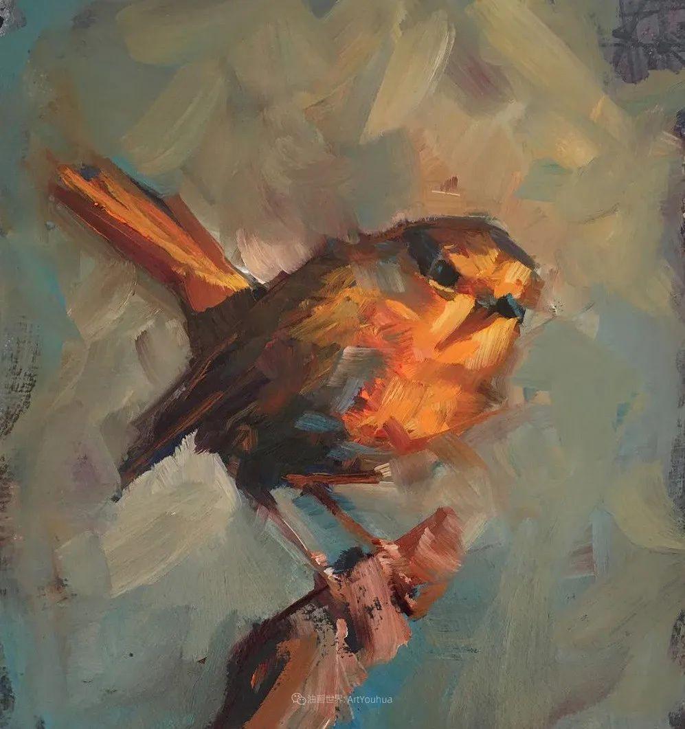 飞行中的鸟儿之美,活力飞扬,太赞了!插图56