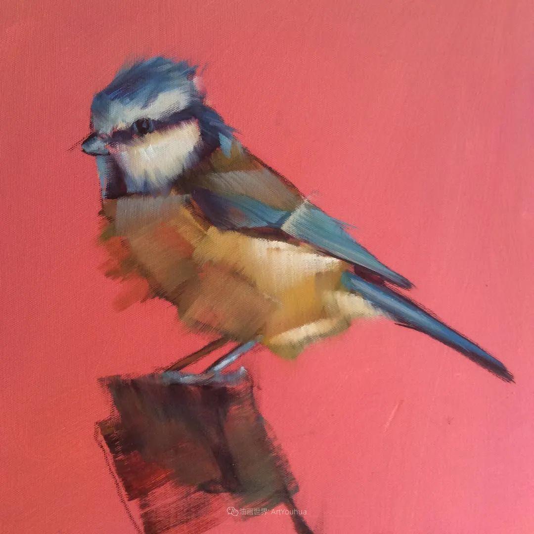 飞行中的鸟儿之美,活力飞扬,太赞了!插图57