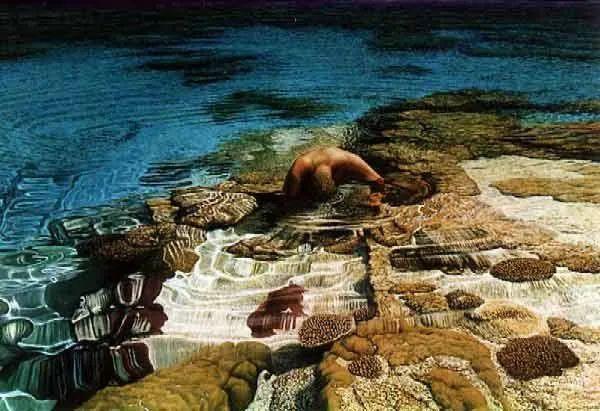 南太平洋最杰出的当代写实画家插图29