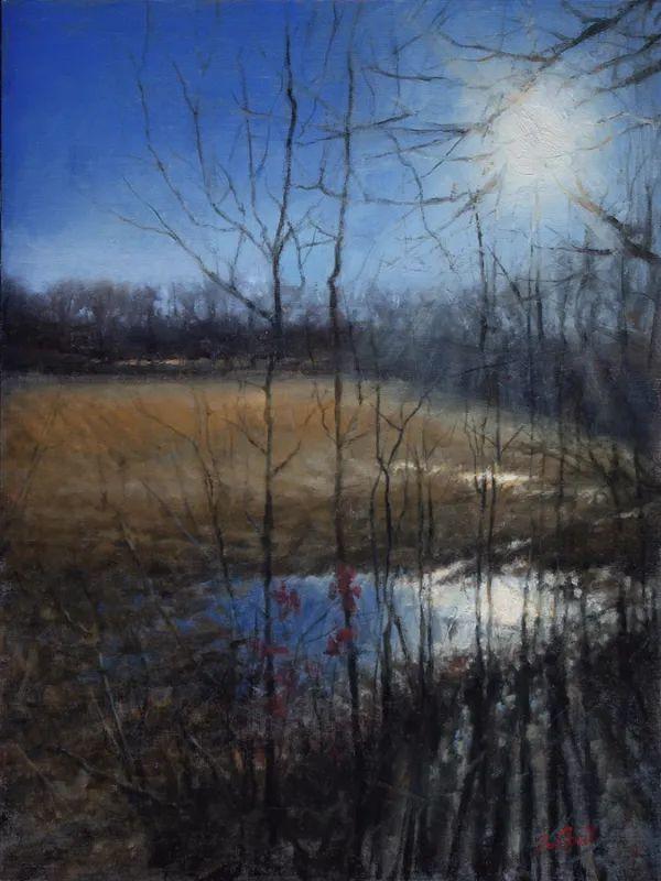 风景欣赏,美国女画家苏·福尔画选 (下)插图41