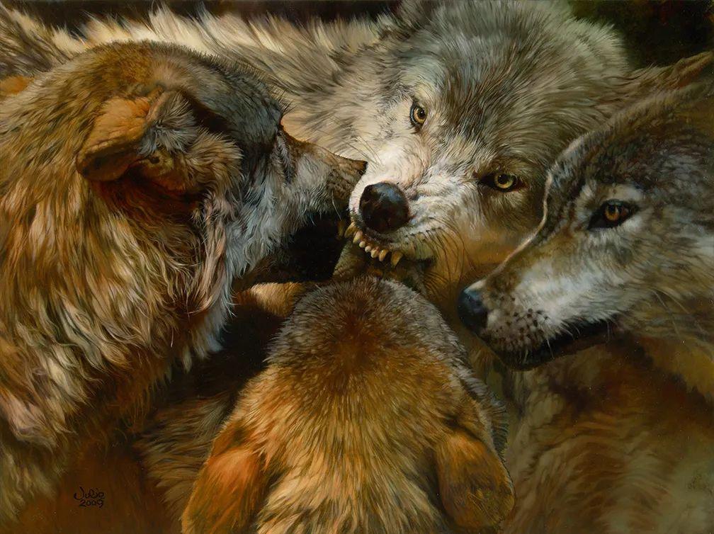 朱莉·贝尔笔下的狼插图1