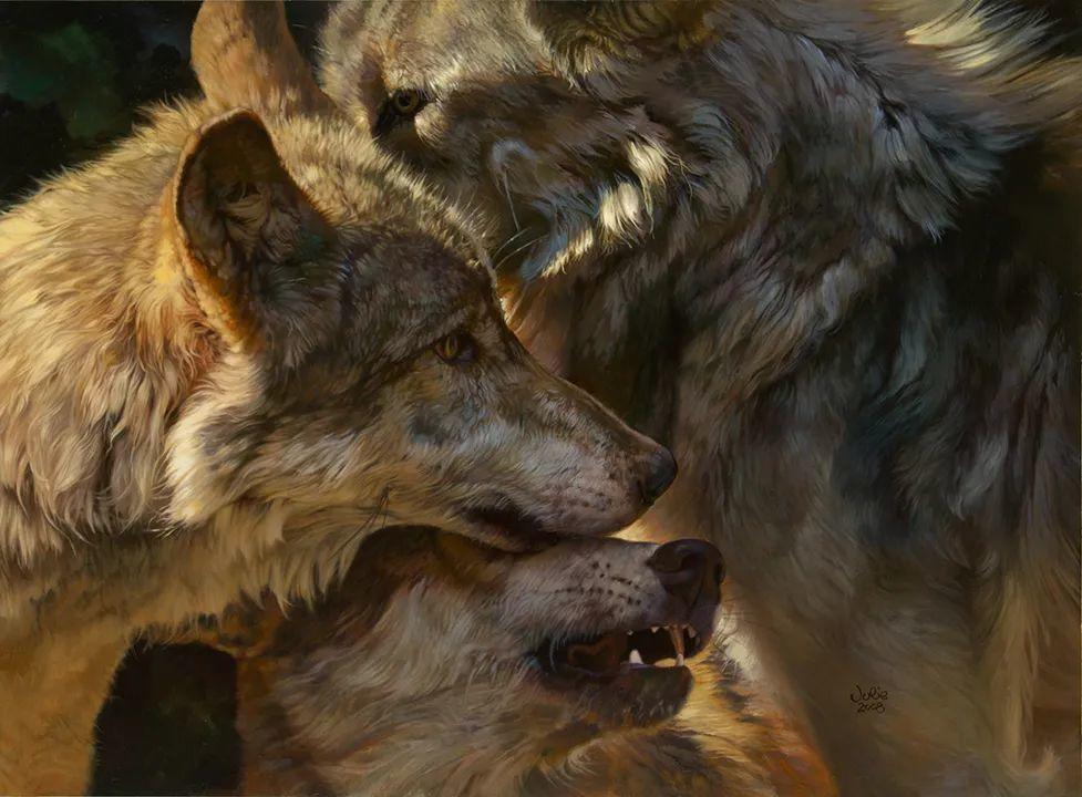 朱莉·贝尔笔下的狼插图7