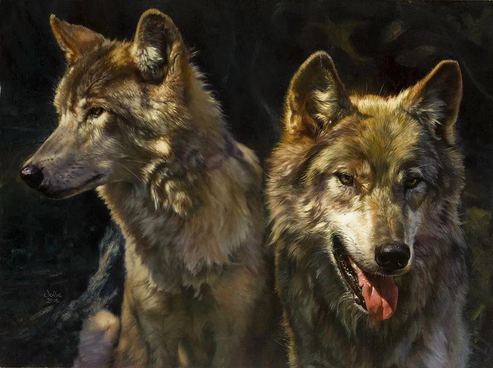 朱莉·贝尔笔下的狼插图9