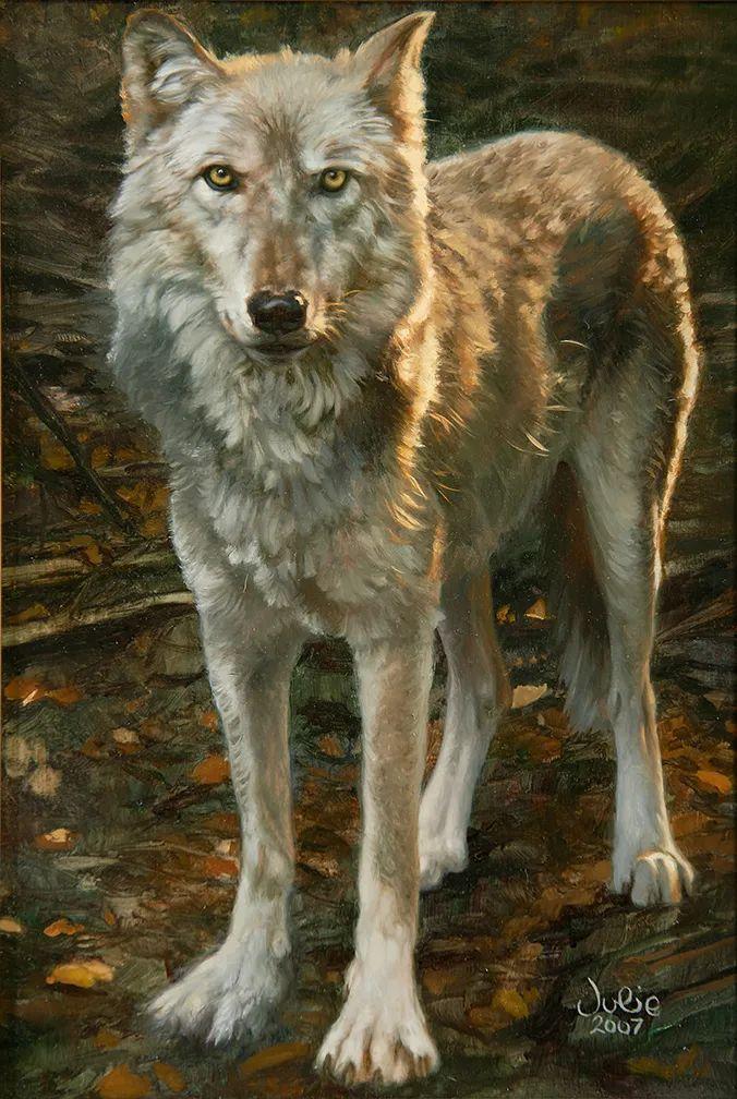 朱莉·贝尔笔下的狼插图11