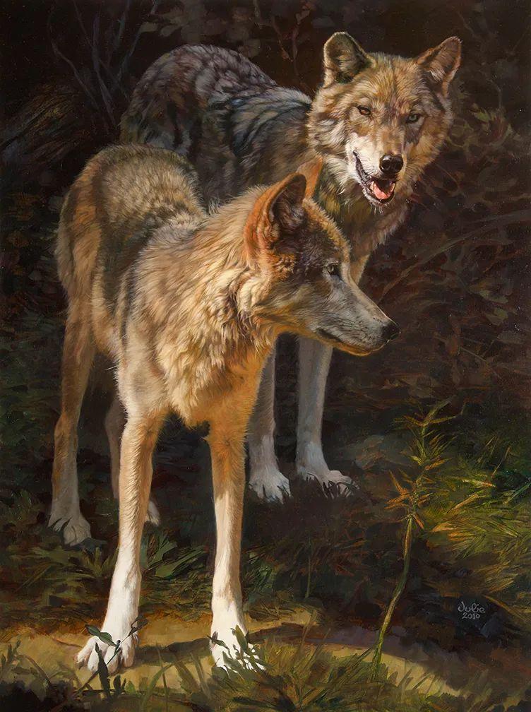 朱莉·贝尔笔下的狼插图13