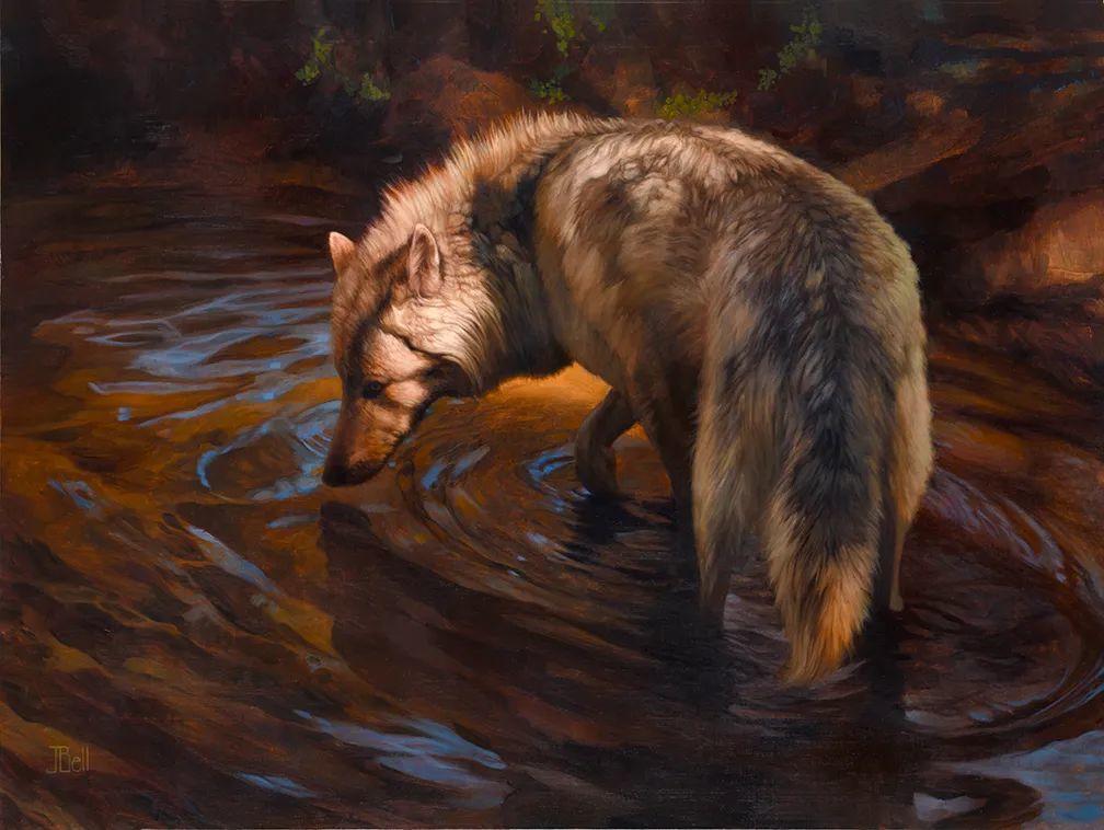 朱莉·贝尔笔下的狼插图23