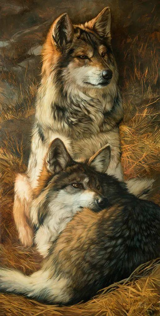 朱莉·贝尔笔下的狼插图27